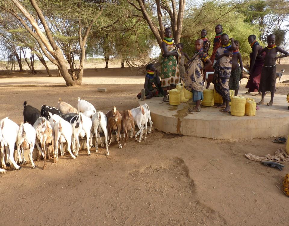 Vnutro_1b_Kotela Akali, Turkana 2015