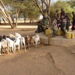 02 Kotela Akali, Turkana 2015