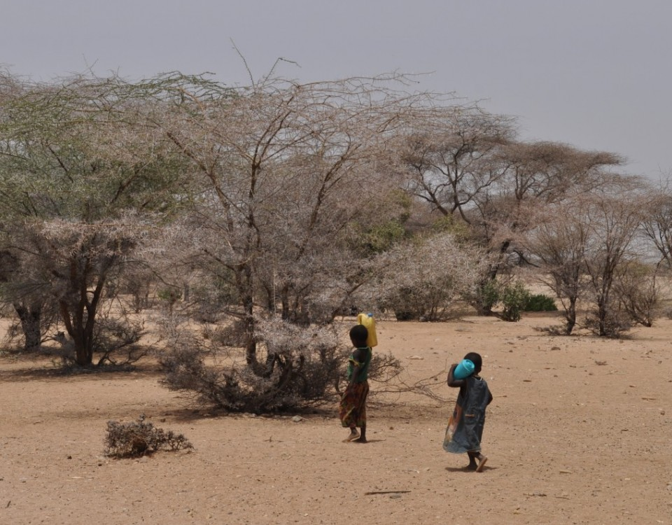 Turkana_2015_byMarianCaucik (5)