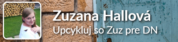 vyzva Zuzka Hallova